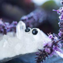 Black Onyx Earrings, Silver Jewellery